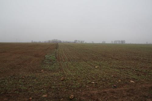 campos del corredor del henares