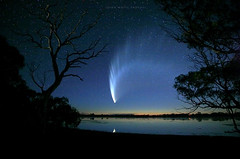 McNaughts Comet (john white photos) Tags: sky reflection beauty night amazing time space tail australia nasa explore journey astronomy comet southaustralia endless portlincoln rightsmanaged exploreinteresting7days mcnaughts mcnaughtscomet bigswamp coontapoo