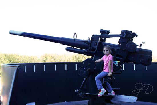 wow, now that's a big gun
