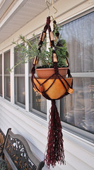 Star Vino Single Macrame Hanging Basket (Macramaking- Natural Macrame Plant Hangers) Tags: wood mountains kitchen beauty vintage idea star beads pretty sink wine herbs handmade unique decorative character cork cottage creative northcarolina funky gift buy shelby chic biltmore dye groovy knots beachhouse bolla vino blackstone hangingbasket shabby jute banfi frescobaldi macram planthanger cavit tapena owlseye macramakin macramaking