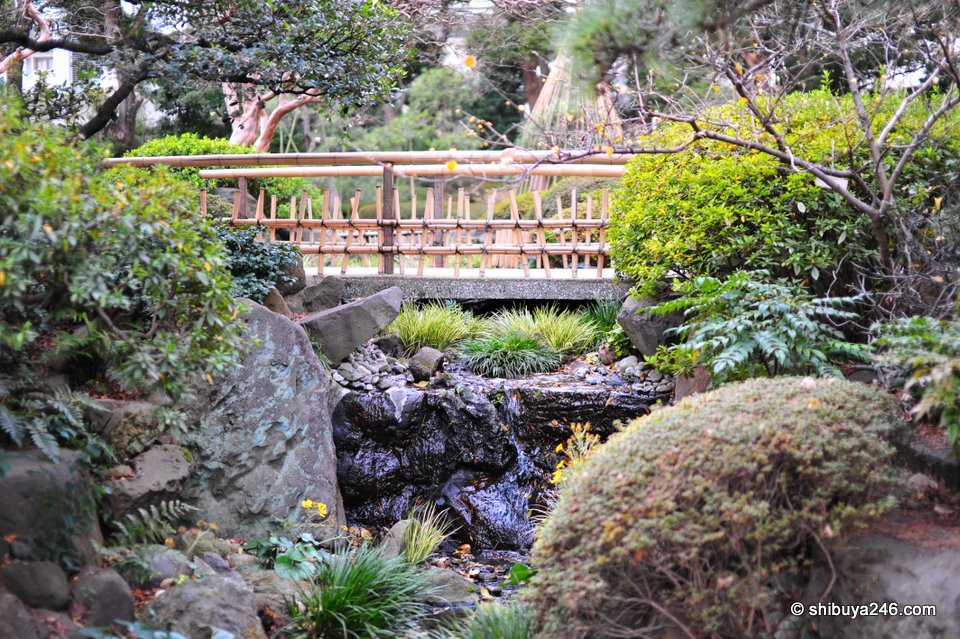 It is nice to see some small bridges in Japanese traditional gardens spanning the water.  Some are curved, maybe painted red, others like this one are more plain, but equally pleasing to the eye.