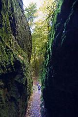 Drachenschlucht - der Wartburg-Wander-Weg