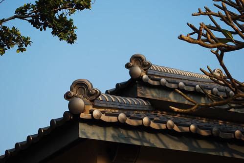 台南黑面琵鷺GO-2010020375
