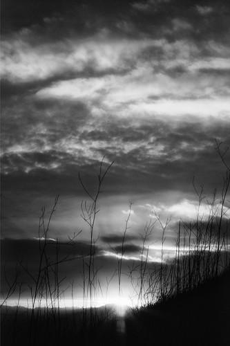Sunset on the horizon - B/W