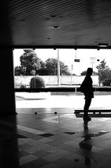 The Standing Lady | A moa parada (Andre Carregal) Tags: bw woman white black reflection portugal silhouette branco lady reflections hall floor mulher pb preto moa cho reflexions reflexion reflexo reflexos albufeira silhueta portaria