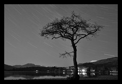 loch lomond star trails (Alan...Fraser) Tags: tree night star scotland long exposure trails loch lomond balmaha milarrochy itsfraz