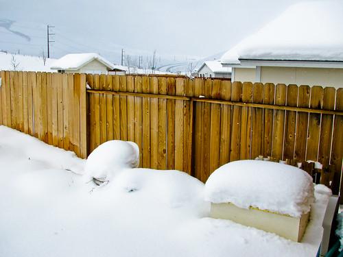 February 2010 Snowstorm