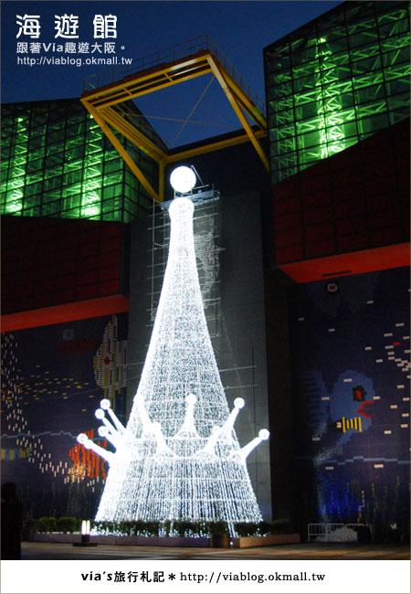 【via關西冬遊記】世界最大極的水族館~大阪海遊館3