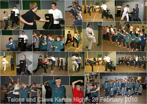 20100226 Scouts Karate
