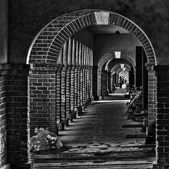 Entering... (louieliuva) Tags: blackwhitephotos