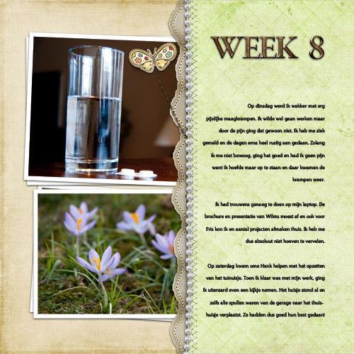 Week 8 - page 1
