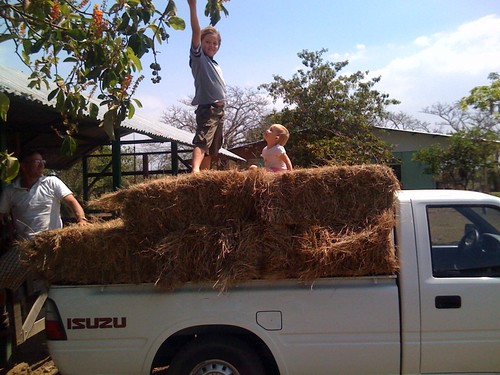 "Hayride! • <a style=""font-size:0.8em;"" href=""http://www.flickr.com/photos/28749633@N00/4429062897/"" target=""_blank"">View on Flickr</a>"