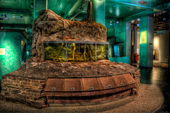 Malm? Museum Aquarium : Welcome to Flickr Hive Mind. If you log into Flickr you will see your ...