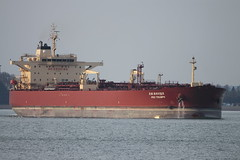 PRO TRIUMPH (John Ambler) Tags: sign call solent triumph oil pro tug refinery tanker imo phenix fawley mmsi 3fol5 9404948 351486000