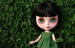Happy St. Patrick's Day! 11/52 (Zaloa27) Tags: green happy doll luck blythe custom clover stpatricksday vainilladolly