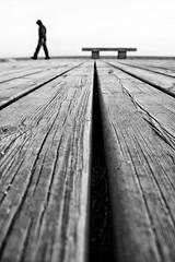 TT (Color-de-la-vida) Tags: wood sea bw lines bench mar madera horizon platform banco bn maresme horizonte lineas plataforma premia colordelavida