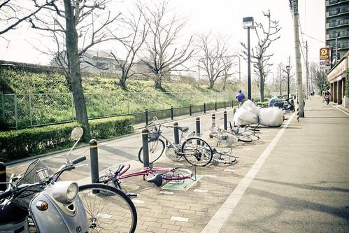 11712- Spring wind storm in Japan