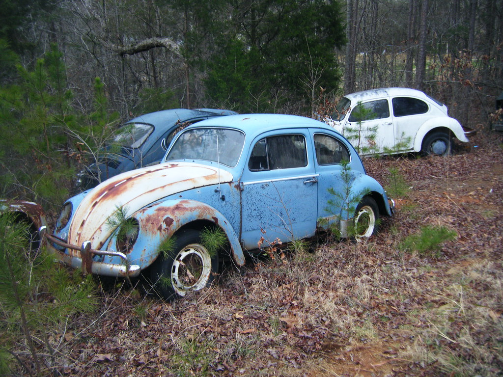 The World's Best Photos of junkyard and southcarolina