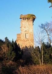 Elphinstone Tower