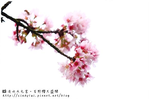 20100312_003