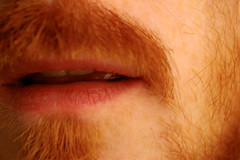 intimacy (Mr-Pan) Tags: detail beard tell dire lips redhead moustache speak roux intimacy dtail sprechen parler raconter pilositfaciale