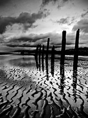 Rainy Day Pilings (Christopher J. Morley) Tags: bw white black reflection beach silhouette vancouver clouds sand bc richmond iona ripples pilings lowtide 100commentgroup mygearandmepremium mygearandmebronze mygearandmesilver mygearandmegold