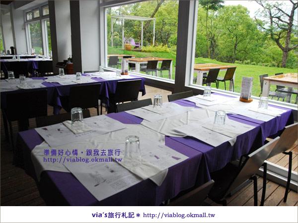 【薰衣草森林明德店】來場專屬的VIP饗宴~我在薰衣草森林!11