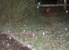 hail1