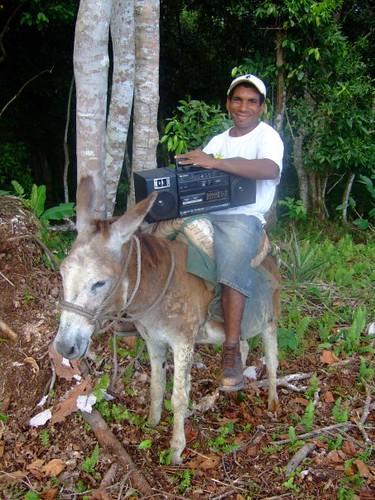 En burro y con su radio