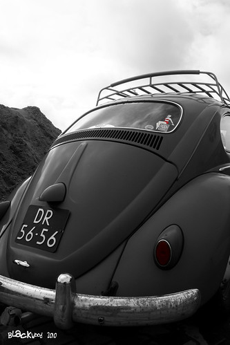 Beetle rear-end