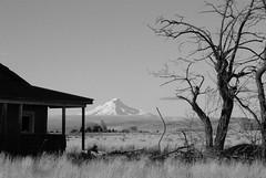 Farmhouse and Tree (loloboho) Tags: farmhouse blackwhite pentax mthood madris k10d 18250mm