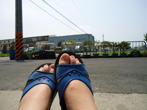 腳腳看世界
