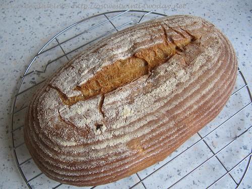 Rustikales Brot - rustic bread - Hamelman 001