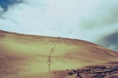 Eeeeeeooooo!!!! (Esparkling) Tags: newzealand persona analógica paisaje nz desierto duna lejos carrete huellas nuevazelanda ltytrx5 ltytr1 esparkling