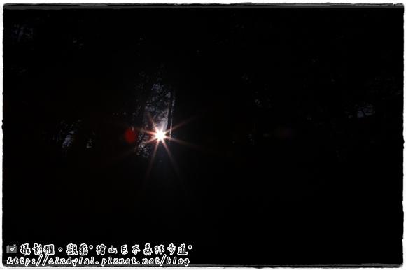 20100410_584
