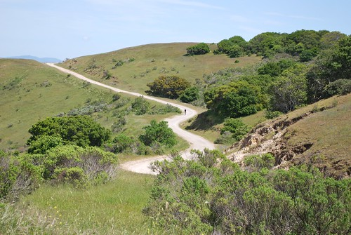 A downhill trail