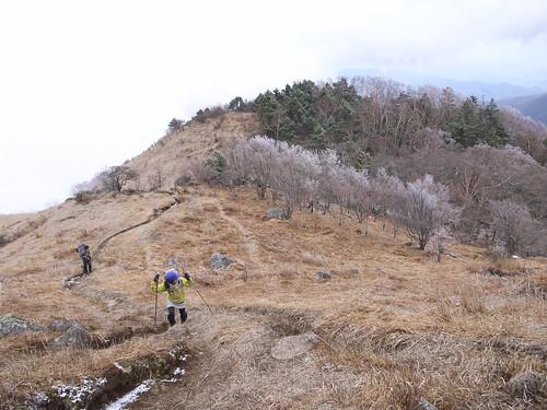 20100424-25 大菩薩嶺