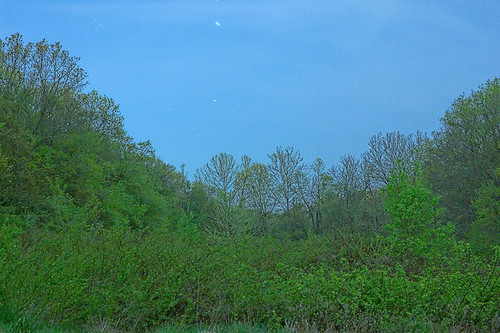 Forest 44 Conservation Area, near Valley Park, Missouri, USA - gap between ridges at dusk