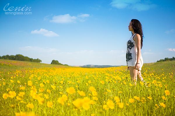 IMAGE: http://farm5.static.flickr.com/4009/4579023279_48acca2ca9_o.jpg