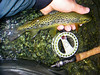 """Pêche de la truite à la mouche dans les Pyrénées © Lionel ARMAND • <a style=""""font-size:0.8em;"""" href=""""http://www.flickr.com/photos/49881551@N02/4583781894/"""" target=""""_blank"""">View on Flickr</a>"""