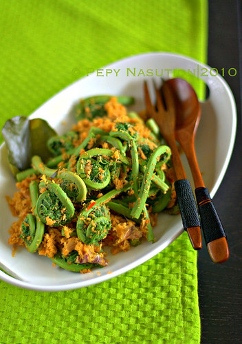 Ayang Pakis - North Sumatran Fiddleheads with Spicy Grated Coconut