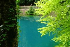 Blautopf (umweltberatung) Tags: wasser karst schwbischealb blautopf hydrologie karstquelle karstwasser