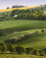White Farmhouse & Blossom (Paul Moon Photography) Tags: landscapesshotinportraitformat