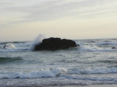 Crash (tbirdshockeyfan) Tags: ocean beach oregon pacificocean crashingwave lincolncityoregon