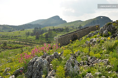 Vall de Gallinera