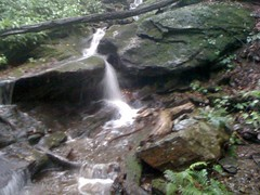 Cascade on Whitly Branch