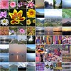 Mosaico de mosaicos (Fernando Reyes Palencia) Tags: fdsflickrtoys guatemala paisajesdeguatemala bellospaisajesdeguatemala fotosdeguatemala bellaguatemala paisajesdelmundo guatemalalandscapes imagenesdeguatemala guatemalapaisajes postalesdeguatemala