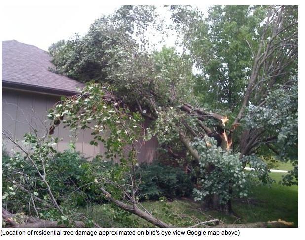 Harrisonville Tornado 6-8-10 Tree