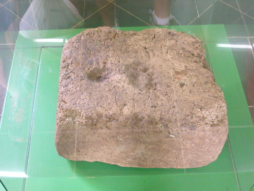 June 10 2010 Managua Museum