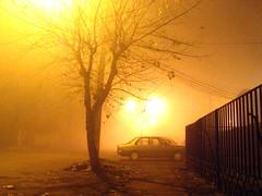 Un rbol solo, en la niebla... (Jorgelo Pez) Tags: chile tree fog rbol niebla rengo